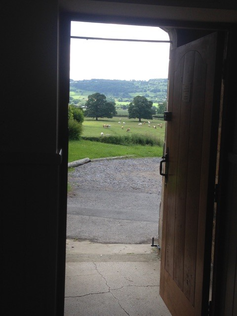 Looking out of the main door